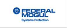 brand Federal Mogul